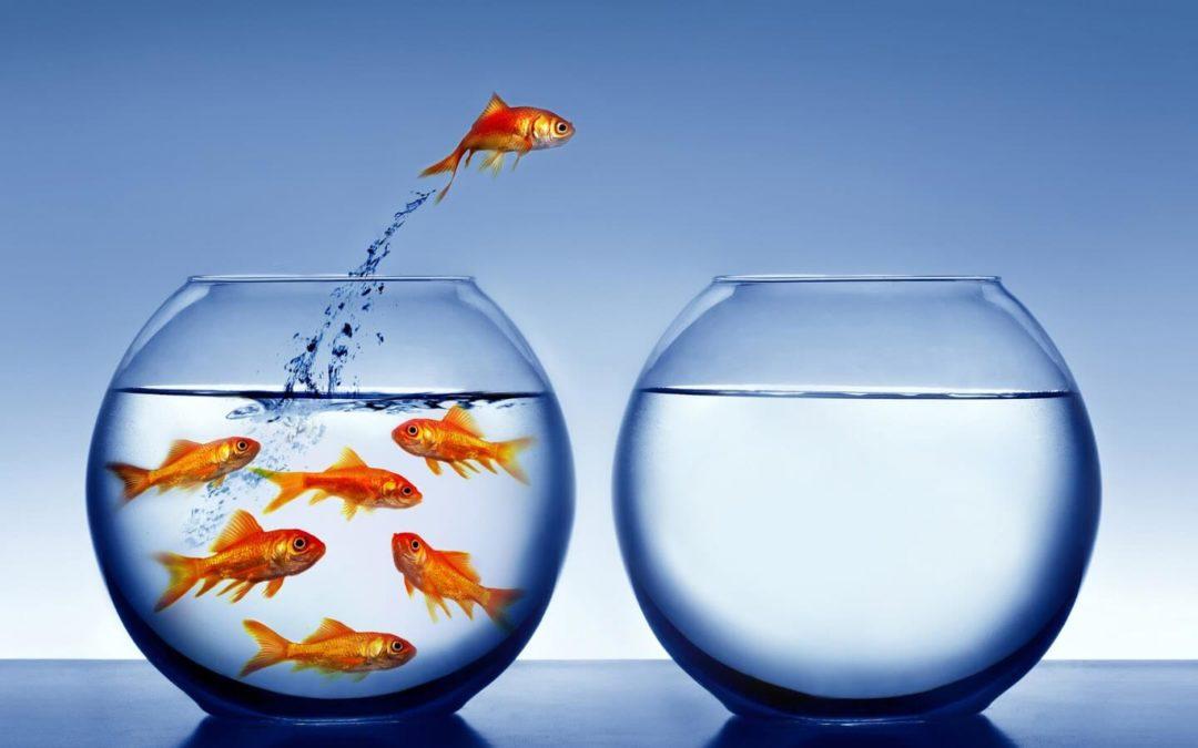 4 tips para adaptarte a un cambio